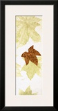 Falling Leaves II Prints by Phillip Jaeger