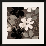 Fleurs III Prints by Sylvie Cailler