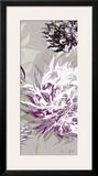 Purple Allure III Posters by Sally Scaffardi