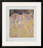 Deer in the Reed Posters by Franz Marc