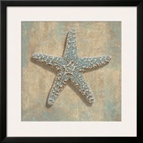 Aqua Starfish Poster by Caroline Kelly