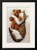Cat's Pet Poster
