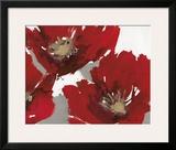 Red Poppy Forrest II Prints by Natasha Barnes