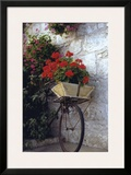 Flower Box Bike Posters by Meg Mccomb