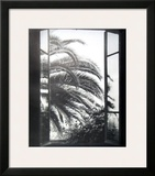 The Palm Tree Posters by Henri Matisse