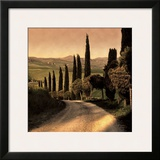 Country Lane, Tuscany Poster by Elizabeth Carmel