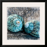 Blue Ocean Shells Prints by Andrea Haase