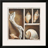 From the Ocean I Prints by Ted Broome