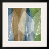 Leaf Structure II Print by John Rehner