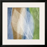 Leaf Structure I Prints by John Rehner
