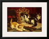 Kittens, 1893 Posters by Charles Van Den Eycken