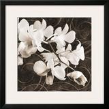 Orchid & Swirls II Art by Christine Zalewski