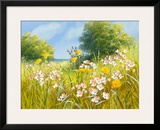 Cuckoo Flowers Framed Giclee Print by Mary Dipnall