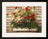 Cape Cod Window Box Print by Ian Cook