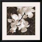 Orchid & Swirls I Posters by Christine Zalewski