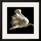 Tulip Framed Giclee Print by Michael Harrison