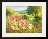 A Meadow In Spring Framed Giclee Print by Mary Dipnall
