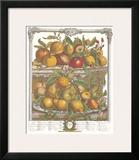Twelve Months of Fruits, 1732, April Prints by Robert Furber