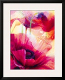 Amid Poppies III Framed Giclee Print by Nick Vivian