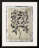 Embellished Antique Foliage I Posters by Pierre-Joseph Buchoz