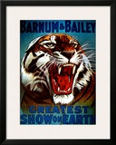 Barnum & Bailey, 1916 Prints