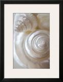 Pearlesce I Posters by Christine Zalewski
