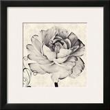 Ghost Flower I Posters by Christine Zalewski