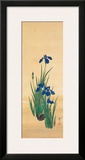 May Framed Giclee Print by Sakai Hoitsu