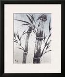 Cool Bamboo II Framed Giclee Print by Katsumi Sugita