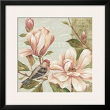 Magnolia Collage II Posters by Pamela Gladding