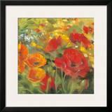 Oriental Poppy Field I Prints by Carol Rowan
