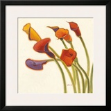Callas in the Wind II Prints by Shirley Novak