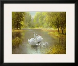 Swan Family Art by Max Weber