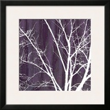 Aurora Silhouette III Print by Alicia Ludwig