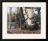 Autumn's Majesty Prints by Kevin Daniel