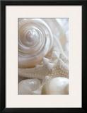 Pearlesce II Prints by Christine Zalewski