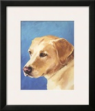 Dog Portrait, Yellow Lab Art by Jill Sands