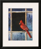 Cardinal Window Posters by Chris Vest