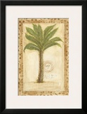 Palmetto Palm Posters by Marianne D. Cuozzo