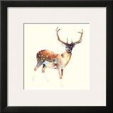 Deer Wearing Gym Socks Prints by Charmaine Olivia