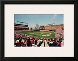 Camden Yards, Baltimore Prints by Ira Rosen
