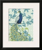 Peacock Full Tail 3 Prints by Marilu Windvand