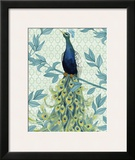 Peacock Full Tail Poster by Marilu Windvand
