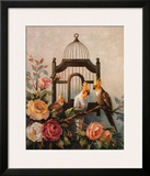 Cockatiel and Roses Prints by Maxine Johnston