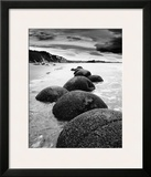 Otago Coast, New Zealand Prints by Monte Nagler