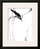 Perched Bird Art by Aurore De La Morinerie