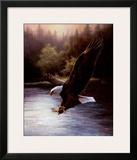 Eagle Prey Posters by T. C. Chiu