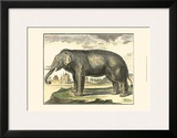 Diderot Elephant Posters by Denis Diderot