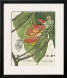 Botanique Tropicale I Posters