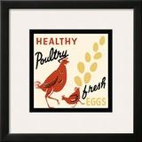 Healthy Poultry-Fresh Eggs Framed Giclee Print
